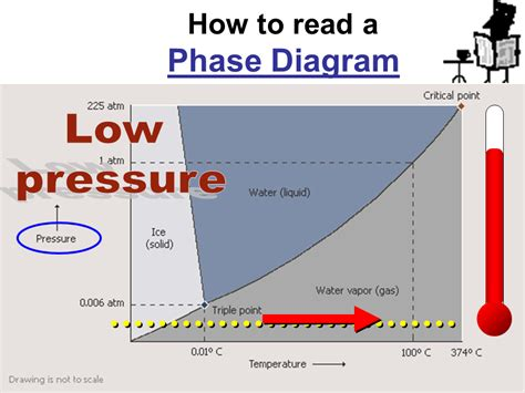 how to interpret phase diagrams how to read a phase diagram especial слайд 115 8th grade