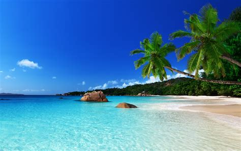 tropical island full hd wallpaper and background image