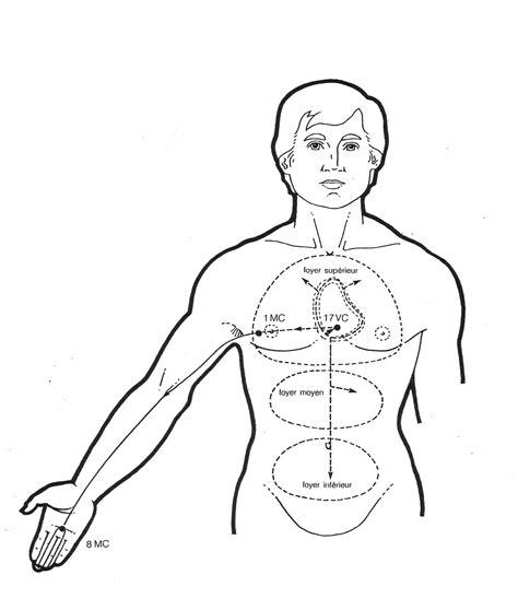 tavole meridiani energetici meridiano stomaco archivi wu wei