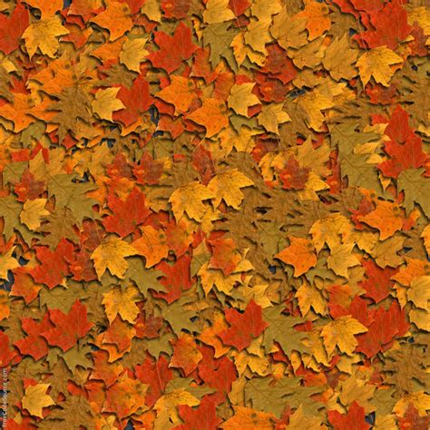 wallpaper tumblr autumn fall leaves backgrounds wallpaper cave