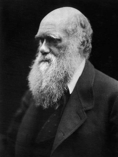 biography of charles darwin darwin day wikipedia