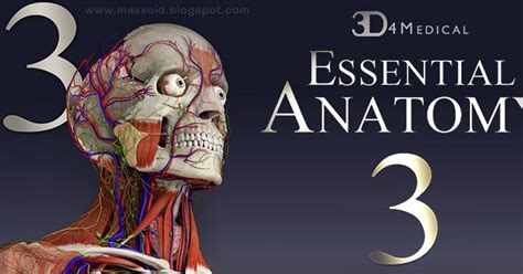 essential anatomy 3 apk ألعاب وتطبيقات الأندرويد apk obb تحميل برنامج أساسيات علم التشريح 3d4medical essential