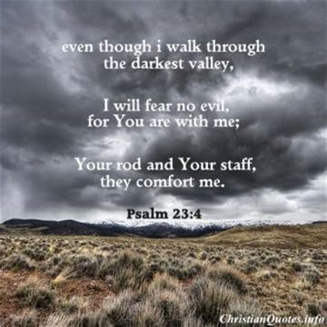 psalms comfort and encouragement top 7 bible verses to calm fear