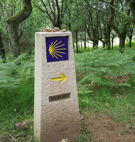 il camino walk walking spain s camino a journey of the spirit that