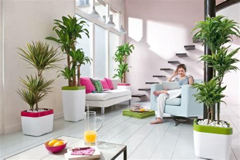 schlafzimmer pflanzen feng shui feng shui pflanzen f 252 r harmonie und positive energie im