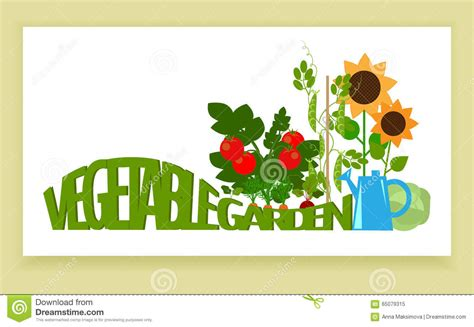 Vegetable Garden Banner Stock Vector   Image: 65079315
