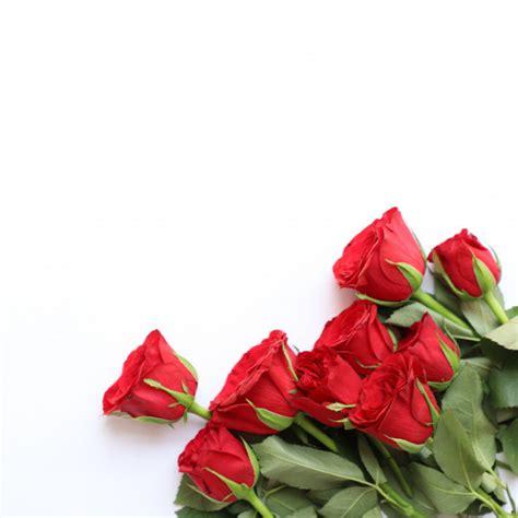 Hochzeit 5 Jahrestag Roter Mehrzweckhintergrund F 252 R Jahrestag Hochzeit