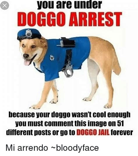 you are arrest you are doggo arrest because your doggo wasn t cool