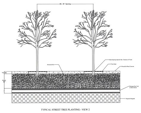 section of tree urban horticulture institute horticulture section school