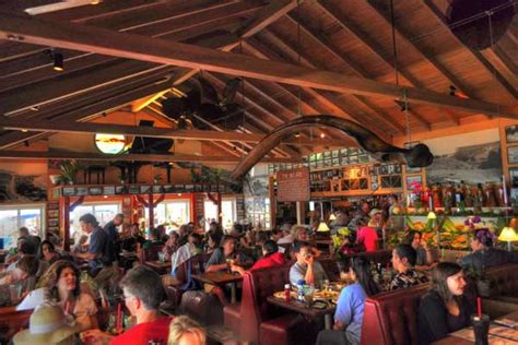 paradise cove malibu menu paradise cove cafe malibu dining guide