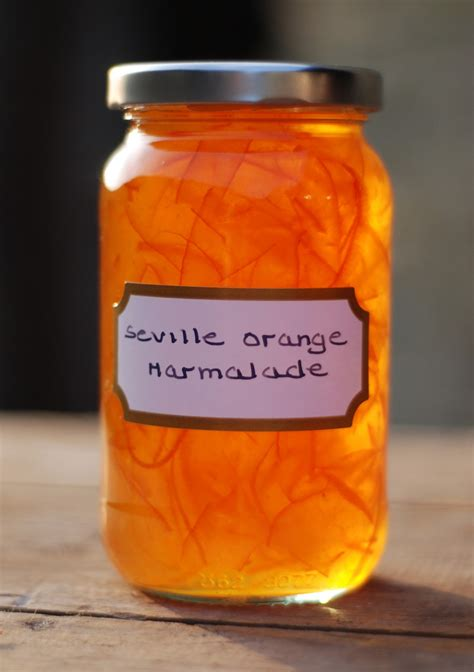baking with marmalade recipes vivien lloyd