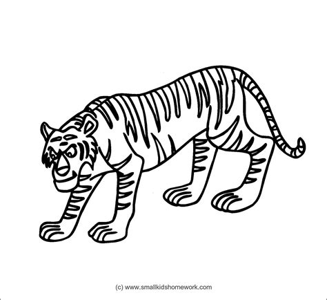 Tiger Outline Images by Tiger Outline Az Coloring Pages
