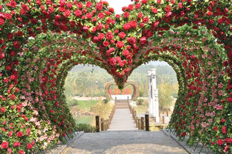 Wedding Aisle Garden by If The Ring Fits Outdoor Wedding Aisle