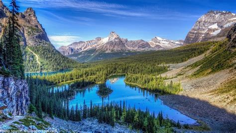 355 Square Feet by Interesting Facts About Rocky Mountain National Park
