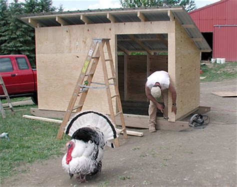 How To Build Goat Shed by Weekend Project Movable Goat Shed Rooster Hill Farm