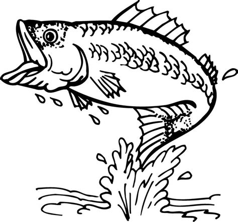 Bass Fish Coloring Pages Free | bass clip art black and white quotes