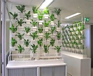Plant Partition Vertical Gardens Living Walls And Plants On Pinterest
