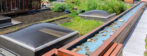 green roof options quincy vrecko