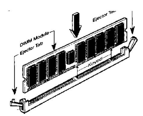 banchi di memoria guida linux hardware la parte dura