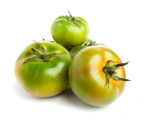 lorraine eaton s pick of the week green tomatoes htonroads com pilotonline com