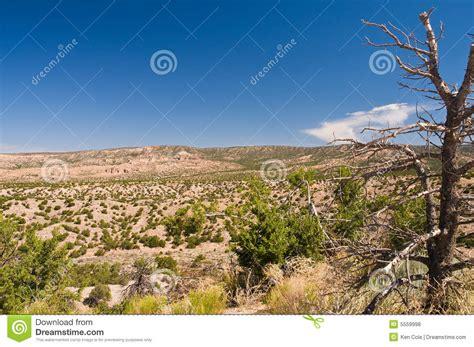 High Desert high desert wilderness royalty free stock photos image
