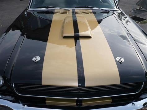 shelby mustang scoop 28 images 67 68 mustang w
