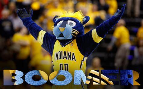 boomer the the homepage of boomer indiana pacers mascot indiana pacers