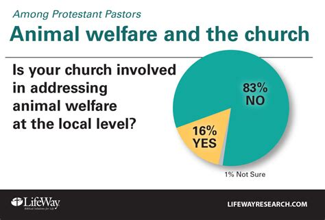 8 Ways To Support Animal Welfare by Protestant Pastors Support But Rarely Preach Animal Welfare