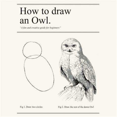 How To Draw An Owl Meme - how to draw an owl