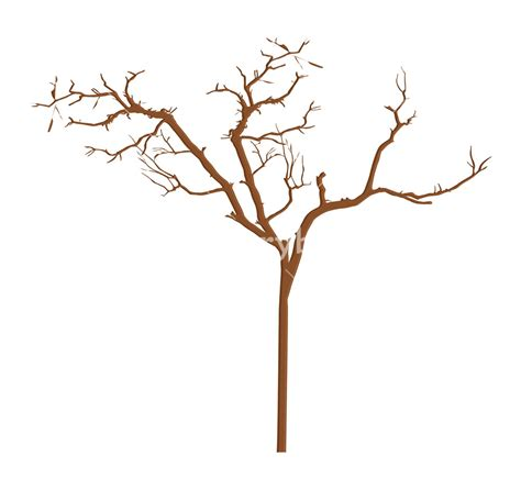 top 28 tree branch designs tree branch template