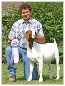judge sherri stephens weak 2009 and prior wether show results at windrush farms in