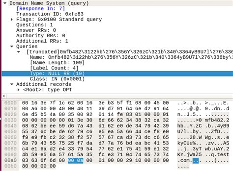 domain  system snort rule  detecting dns packets