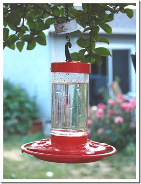 hummingbird nectar bring 1 part white sugar 4 parts