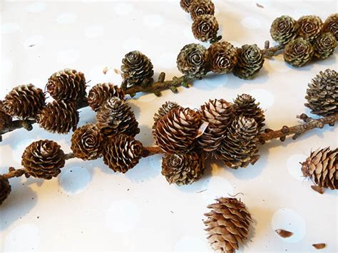 pine cone crafts for pine cones clipartqueen s