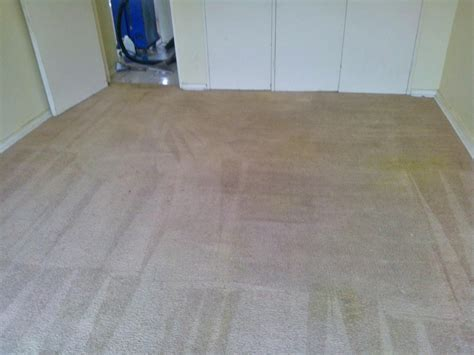 Rug Cleaning Ny by Carpet Cleaning Ny Rug Cleaning New York