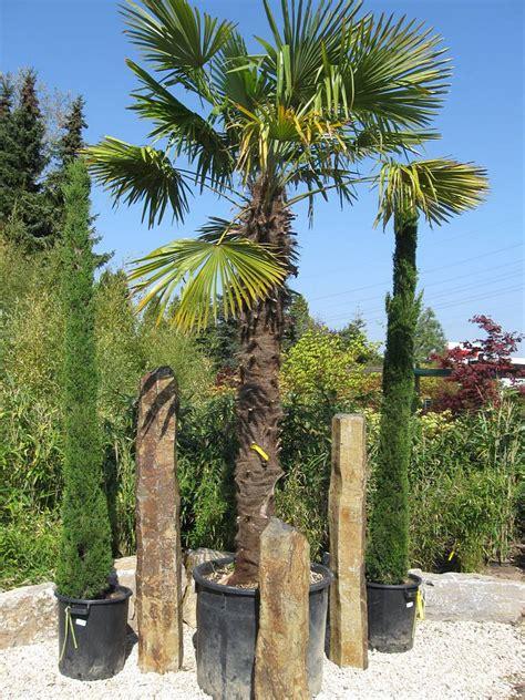 Durchschnittsverbrauch Gas 3 Personen Haushalt 4034 by Gartengestaltung Mit Zypressen Gartengestaltung Mit