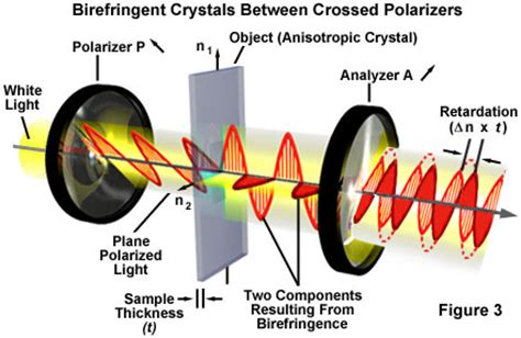 what does polarized light molecular expressions science optics and you light and