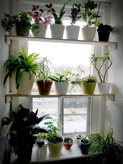 Window Shelf For Plants by Elven Maker These Are A Few Of Favourite Things