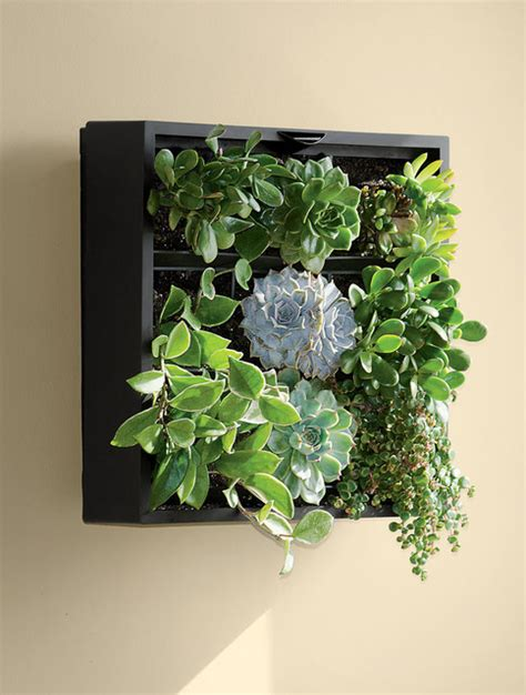 living wall planter contemporary indoor pots and