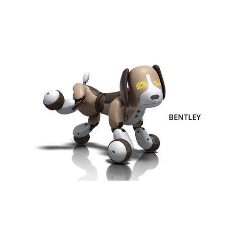 zoomer bentley zoomer 2 0 perro robot bentley