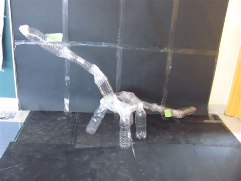 como hacer un dinosaurio con botella de plstico taller de dinosaurios de pet maestra antonia hensmann