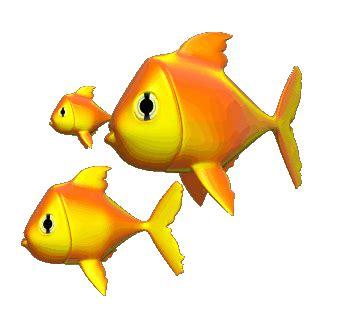 Makanan Ikan Hias Layang Layang sistem gerak pada hewan