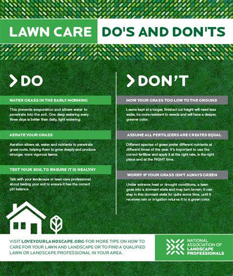 summer lawn care tips a seasonal guide summer lawn and landscape care