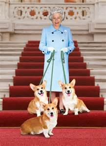 queen elizabeth with her corgis a famous people and pets