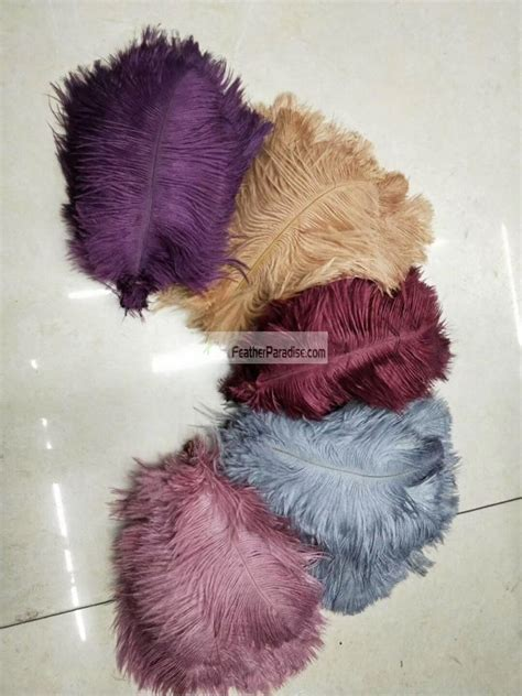 Burgundy Plum Ostrich Feathers 100 Pieces 10 12 inch
