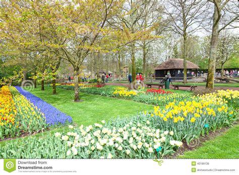 flower garden netherlands tulips collage keukenhof flower garden park netherlands