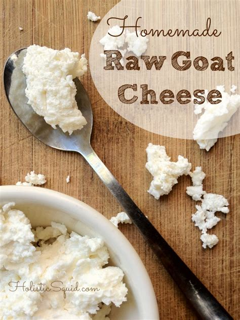 how to make goat cheese in the raw holistic squid