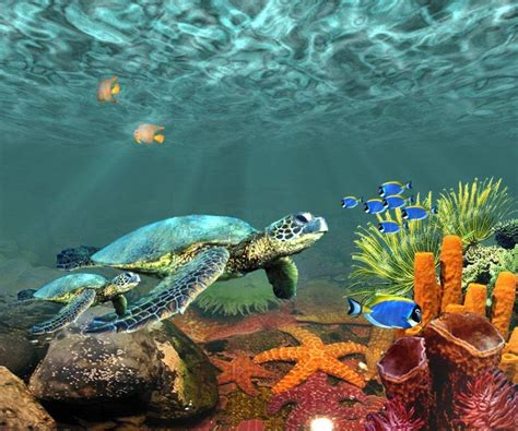 underwater desktop backgrounds wallpaper cave