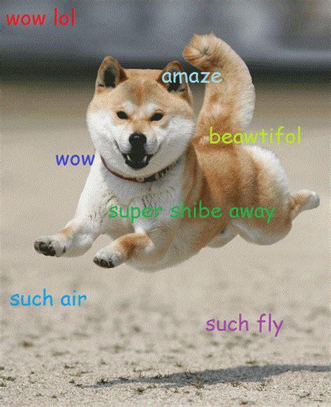 Doge Meme Origins - image 582330 doge know your meme