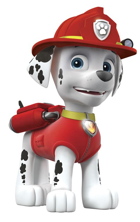 paw patrol characters paw patrol marshall and paw patrol badge marshall nickelodeon universe